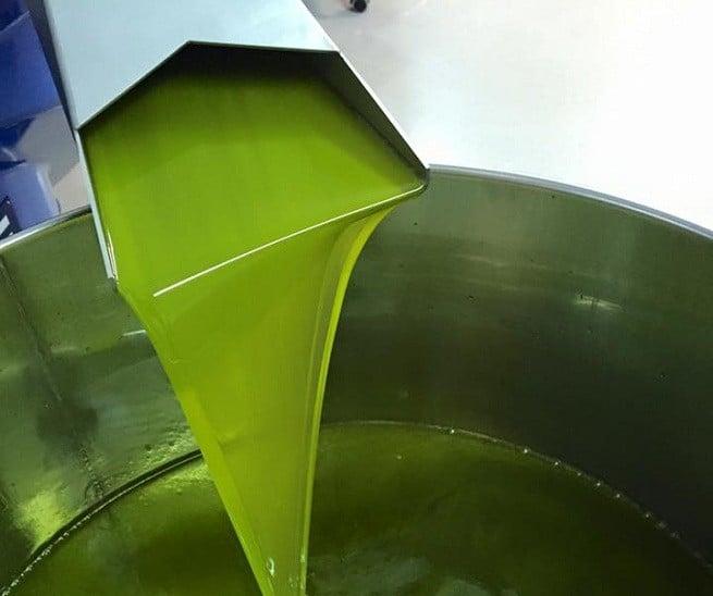 So sieht frisch gepresstes Olivenöl aus. Gepresst wird noch am Tag der Ernte. Foto: Facebook