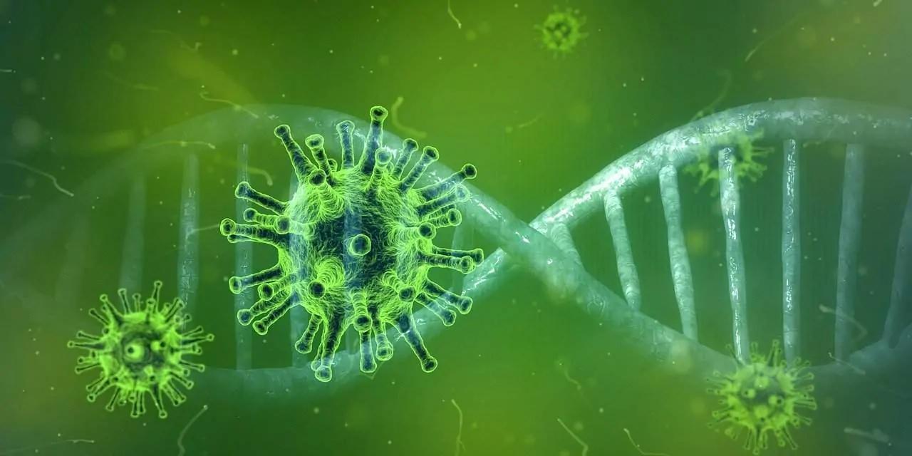 Aktuelle Nachrichten Corona Virus