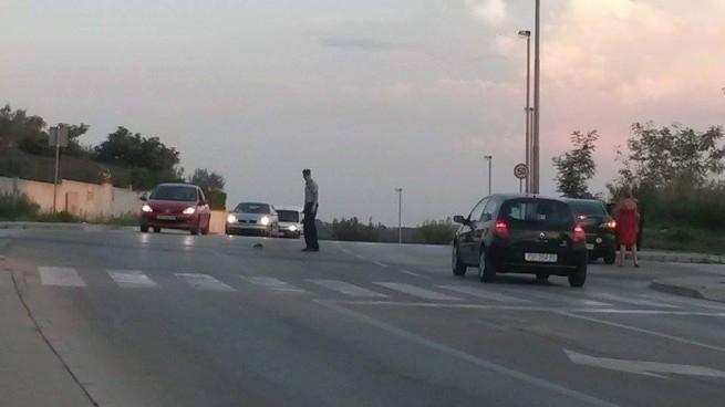 Der glückliche Igel überquert die Straße in der Dämmerung unter Polizeischutz. Foto: Kristina Klarić/GradPula.com