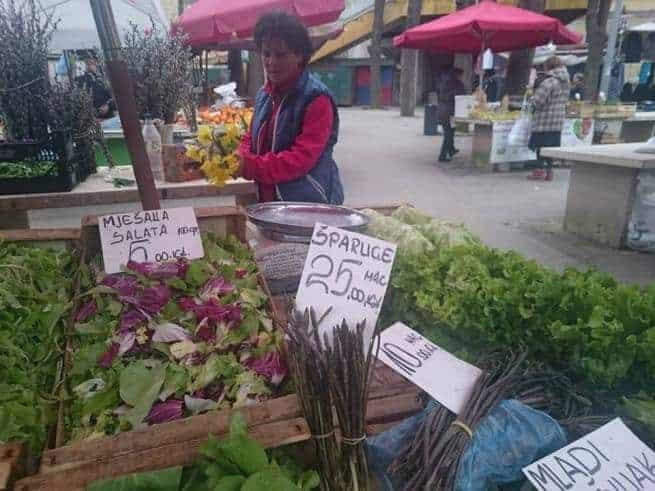 Die Saison des Wildspargels in Istrien hat begonnen. Foto: Enio Pašalić