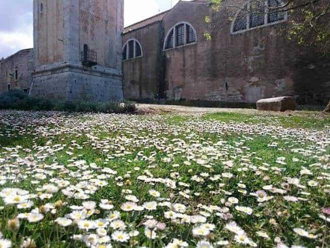 Am Fuße des Turmes der Kirche der Hl. Eufemia. Foto: Enio Pašalić
