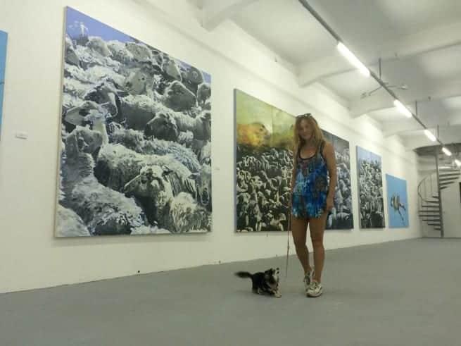 Tierische Ausstellung MSUI Pula. Foto: Facebook